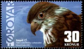Faroe stamp 427 merlin.jpg