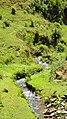 Fazenda em São Bartolomeu - panoramio.jpg