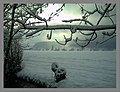February Winter Light Glottertal - Mythos Black Forest Photography 2013 - panoramio (11).jpg