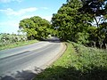 Felixstowe Road - geograph.org.uk - 1293308.jpg