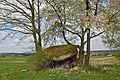 Felsgebilde Hoa Stoa bei Ullrichs 2014-04 01 NÖ-Naturdenkmal GD-055.jpg