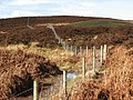 Fence by the Glen Burn - geograph.org.uk - 353977.jpg