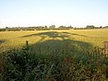 Field Near Thorneyford - geograph.org.uk - 204427.jpg