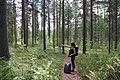 Finland IMG 4666 (2719665782).jpg