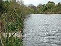 Fishing platform, Martins Pond - geograph.org.uk - 1040783.jpg