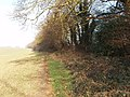 Flackwell Heath fieldpath - geograph.org.uk - 117383.jpg