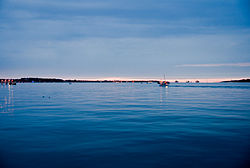 Flickr - Laenulfean - Kiel Bay at night.jpg
