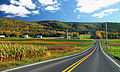 Flickr - Nicholas T - Country Drive.jpg