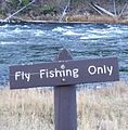 Fly fishing only areas.JPG