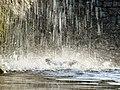 Fontanna w Ślesinie - panoramio (1).jpg