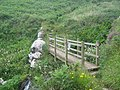 Footbridge near Lean Point - geograph.org.uk - 1459472.jpg