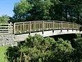Footbridge over the river Tawe, Glyntawe - geograph.org.uk - 257638.jpg