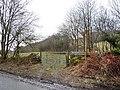 Footpath to Newlands - geograph.org.uk - 1726446.jpg