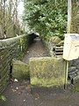 Footpath to Wainhouse Tower - geograph.org.uk - 1084039.jpg