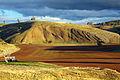 Fossil Hill, Cliefden.jpg
