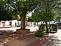 Fotos de Atalaya del Cañavate 23.jpg
