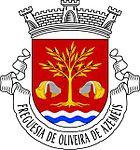 Coat of arms of Oliveira de Azeméis