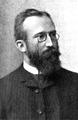 Friedrich Schur.png