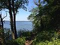 Görslow Schweriner See Ufer 2014-04-27.JPG