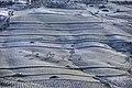 Gagliano - Campagne innevate di contrada Comune - panoramio.jpg