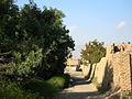 Garden Way - Wall - trees - streamlet - 17 Shahrivar st - Nishapur 35.JPG