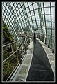 Gardens by the Marina Bay - Dome Clouds 04 (8332667600).jpg