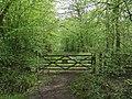 Gate into Hoddesdon Park Wood - geograph.org.uk - 787144.jpg