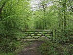 Gate into Hoddesdon Park Wood - geograph.org.uk - 787144.jpg