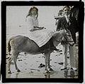 Girl on beach donkey (2883583328).jpg