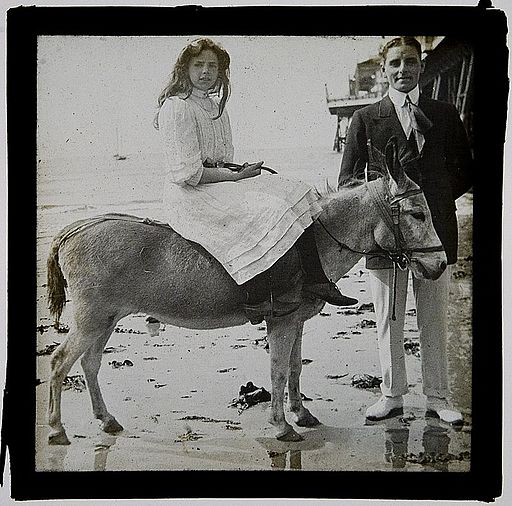 Girl on beach donkey (2883583328)