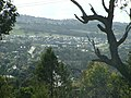 Glenfield Park viewed from Willans Hill.jpg