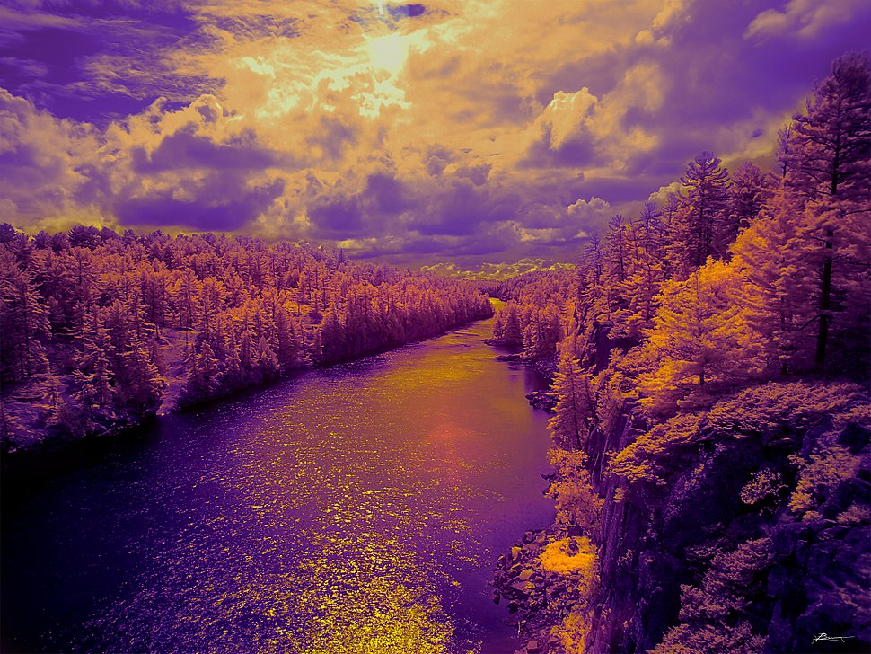 Glimpse of a dream (9391068364)