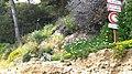 Glissement de terrain à l'est du cap Blanc au Cap bénat - panoramio (5).jpg