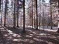 Gmina Narol, Poland - panoramio (30).jpg