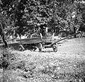 Gnojni voz, Vino 1948.jpg