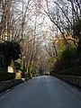 Granada (26014101621).jpg