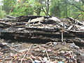 Grandview Apostolic Church rubble pile from east.jpg