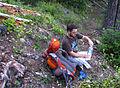 Grayback Mountain (15638051170).jpg