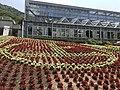 Greenhouse in Innoshima Flower Center 3.jpg