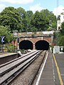 Grove Lane Railway Tunnels SE5 - geograph.org.uk - 1313025.jpg