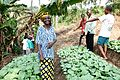 Growing as a community in rural DR Congo (7609967072).jpg
