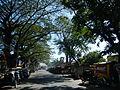 Guimba,NuevaEcijajf5630 12.JPG