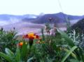 Gunung Bromo.png