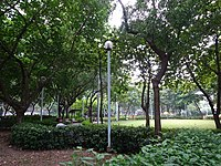 HK 堅尼地城 Kennedy Town 加多近街臨時花園 Cadagan Street Temporary Garden name sign n trees Oct-2015 DSC (7).JPG