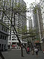 HK 油麻地警署 Yaumatei Police Station 廣東道 Canton Road trees visitors Overcast day 2010.jpg