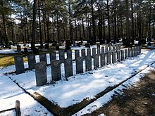 Colour photo of two rows of dark grey gravestones, with trees in the background