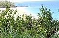 Hanalei, Kauai, Hawaii - panoramio (14).jpg