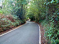 Hangrove Hill, Downe BR6 - geograph.org.uk - 67928.jpg