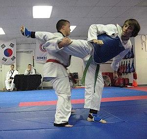 Hapki Kochido Musool - Image: Hapkido 2 crop edit