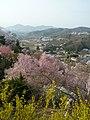 Hara Watari, Fukushima-shi, Fukushima-ken 960-8141, Japan - panoramio.jpg